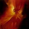 Fire_BIRD_500